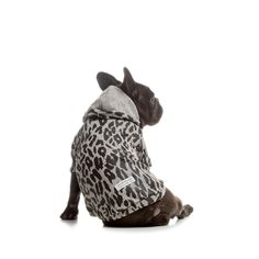 Safari Hoodie For Dogs Just right for visiting the bright lights in the Big City: in this casual hoodie with vibrant animal print design your pet really belongs to the Big Five downtown. With short sleeves and the cool hood this fashionably demonstrates who's who in the neighbourhood.