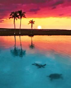 Peaceful Sunset at Kiholo Bay Big Island Hawaii....   by Yves Rubin.... #Relax more with healing sounds:
