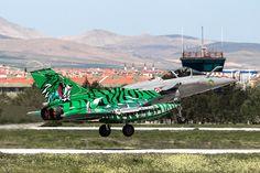 Rafale C, 113-IX, Monster Tiger, Armee De L'Air
