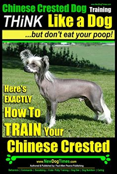 Chinese Crested Dog Training   THiNK Like a Dog...But Don... https://www.amazon.com/dp/B00ILV40J2/ref=cm_sw_r_pi_dp_SCpIxb9MDNQW9