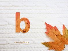 Lowercase letter b with glitter leaf and sweater knit. #fall #autumn #alphabet #typography #initial #monogram #font   maple leaf