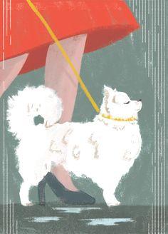 Portrait of a dog - lucia calfapietra