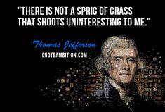 Famous Thomas Jefferson Quotes Adorable 23 Best Jefferson Quotes Images On Pinterest  Thomas Jefferson .