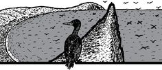 Cartoon cormorant sits on beach cliff face.    Despite the reindeer crash, life continues on St Matthew Island. The island is a haven for sea birds like cormorants.    Image from Stuart McMillen's comic St Matthew Island.