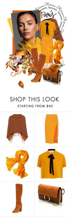 """I Love Paris in the Fall"" by kari-c ❤ liked on Polyvore featuring Samoon, Altuzarra, Reed Krakoff, Elvi, Chloé and fallgetaway"