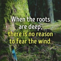 When the roots are deep, there is no  reason to fear the wind. - Self esteem grounds you.