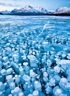 For those of you in need of 'cooling' thoughts.Enjoy these ice bubbles in Abraham Lake, Canada. Frozen ice bubbles in Abraham Lake, Canada. All Nature, Amazing Nature, Science Nature, Green Nature, Beautiful World, Beautiful Places, Amazing Places, Amazing Things, Beautiful Hotels