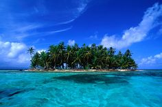 Coconut palm trees on key in San Blas Islands, Panama.