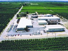 Hughson Nut Incorporated serving high quality whole and sliced #almonds from #California to the world!