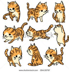 british shorthair tabby cartoon - Yahoo Image Search Results