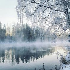 Featured artist November-morning by the lake - Gofinland. Winter Photography, Landscape Photography, Nature Photography, Winter Pictures, Nature Pictures, Especie Animal, Winter Songs, Winter Magic, Winter's Tale