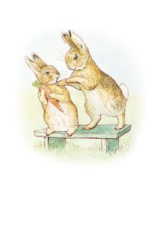 The Story of a Fierce Bad Rabbit - The bad Rabbit would like some carrot