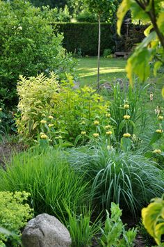 Greens and pale yellows - grasses, phlomis, alchemilla, breadseed poppy, rock.