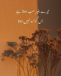 Love Poetry Images, Love Romantic Poetry, Poetry Quotes In Urdu, Best Urdu Poetry Images, Love Poetry Urdu, Urdu Quotes, Romantic Quotes, Quotations, Funny Quotes