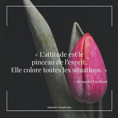 Positive Life, Positive Attitude, Positive Affirmations, Life Is Beautiful, Words Quotes, Quotations, Inspirational Quotes, Positivity, Courage