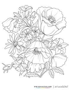 Adult Coloring Printables Free Printable PagesFree