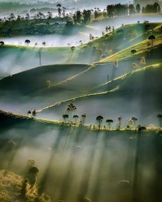 Morning sunshine light painting itself across the landscape 🍃 Cukul Pangalengan, Indonesia. Photo by 🌞 Good Vibes Lifestyle 🌞 The best self help book 📓 of the last several 👌. Fotografia Macro, Photos Voyages, Light Painting, Amazing Nature, Belle Photo, Nature Photos, Beautiful Landscapes, Beautiful Nature Photography, Beautiful World