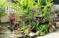 Resultado de imagem para container gardens