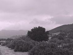Rain. Malibu.