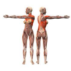 Right waist rotation pose - Katichakrasana right - Yoga Poses | YOGA.com