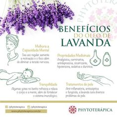 Óleo essencial lavanda Anti Stress, Stress Less, Natural Medicine, Herbal Medicine, Peace Love And Understanding, A Kind Of Magic, Body Is A Temple, Healthy Lifestyle Tips, Flower Fairies