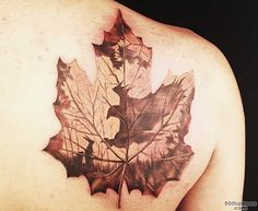 Chinese Maple Leaves Tattoo lt Images amp galleries_17