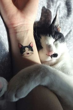 Get your super cute cat tattoo ideas here! We collected the cutest kitty tattoo designs on the web for all the cat lovers out there! You can thank us later!