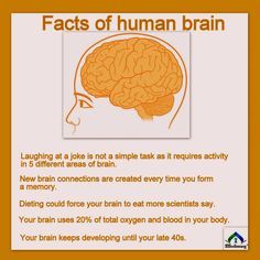 Facts of human brain https://www.mapmylab.com/ Mapmylab offers you Online test booking Free electronic health records Free medical reports Home visits(sample collection)