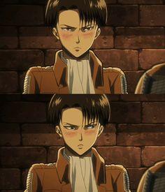 Levi why chu blushing? Hmm                            (͡° ͜ʖ ͡°)