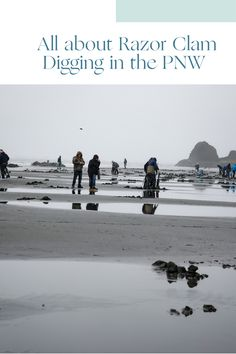 In the Pacific Northwest Clamming is a family-friendly, dog-friendly activity that just about anyone can do. Check out the blog with everything you need to know to start clam digging in the pacific Northwest. Pacific Ocean, Pacific Northwest, Washington State Campgrounds, Haunted Attractions, Port Angeles, Olympic Peninsula, Beach Town, Winter Photography, Clams