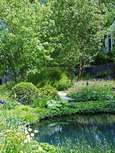 Plant a natural garden in your backyard. Get ideas for reflecting Mother Nature by planting certain trees, shrubs, flowers and plants. Our ideas will help you create a garden that gives back and looks absolutely beautiful. Natural Landscaping, Backyard Landscaping, Backyard Patio, Landscape Design, Garden Design, Garden Shrubs, Garden Plants, Villa, Woodland Garden