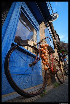 Roscoff, Brittany, France...I actually met one of the last of the Johnnies...these are the men with their bikes loaded with the famous red Roscoff onions on the ferry to England to sell.