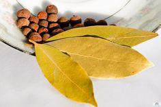 О лавровом листе   Для улучшения пищеварения и профилактики метеоризма, при головных болях, при отложении солей, при повышении содержания сахара в крови, заживляет ушибы, растяжения, переломы, для повышения иммунитета - помощник один - лавровый лист!  Лавровый лист полностью сохраняет свои свойства в высушенном виде. Лавровые листы должны иметь зелено-оливковый цвет, короткие черешки, характерный запах и горький вкус.  Он обладает дезинфицирующим, ветрогонным и потогонным свойствами…