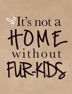 8x10 Pet Quote Art Print - It's not a home without fur-kids Wall Art Print - Dog…