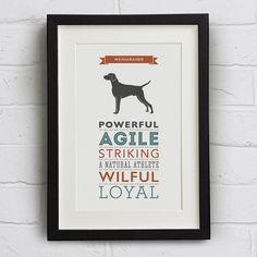 Weimaraner Dog Breed Traits Print