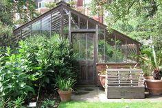 Early American Gardens: Chelsea Physic Garden