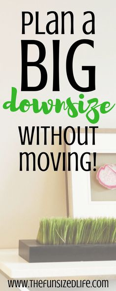 This is amazing! Downsizing without the stress of moving! #downsize #move