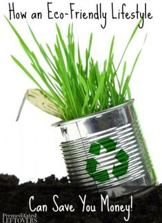 How to Save Money By Living An Eco-Friendly Lifestyle - tips for saving money while doing things that are good for the environment.