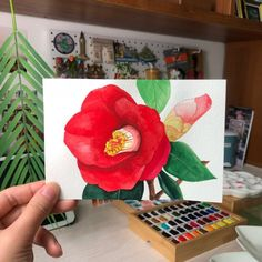 Watercolor Cards, Watercolor Flowers, Watercolor Paintings, Watercolours, Cute Art Styles, Korean Art, Camellia, Acrylic Art, Botanical Art