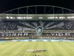 BotafogoDePrimeira: Botafogo registra dois dos quatro maiores públicos...