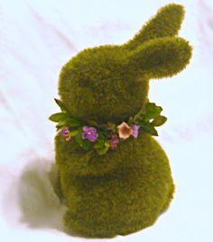 you are cute moss bunny