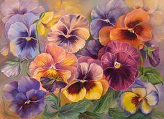 Pansies, beautiful colors