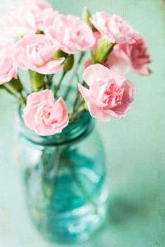 Carnations in a jar - simple but so pretty