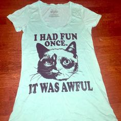 """Grumpy Cat """"I Had Fun Once It Was Awful"""" M T-shirt Super cute Grumpy Cat t-shirt Color is light teal/ minty blue green color In great condition Grumpy Cat Tops Tees - Short Sleeve"""