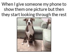 It's usually me who does that because everyone has a better phone that me : /