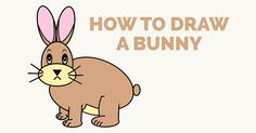 How to Draw a Bunny Rabbit: Easy and Simple Guide