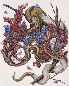My name is Lauren Marx and I am an artist based in St. Louis, Missouri and I create nature-focused artwork. Art And Illustration, Animal Drawings, Art Drawings, Arte Inspo, Snake Art, Arte Horror, Arte Pop, Art Graphique, Dark Art