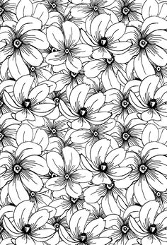 colorama coloring pages google search new joy of coloring