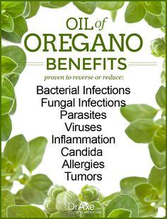 Oil of Oregano Benefits: http://draxe.com/oregano-oil-benefits-superior-prescription-antibiotics/ #health #oregano #essentialoil