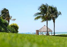 Paradise on the horizon!